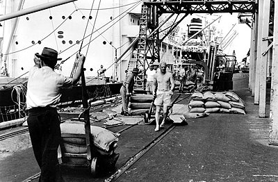P18520. Waterside workers loading bagged sugar onto ships at Cairns wharf, 1950s.