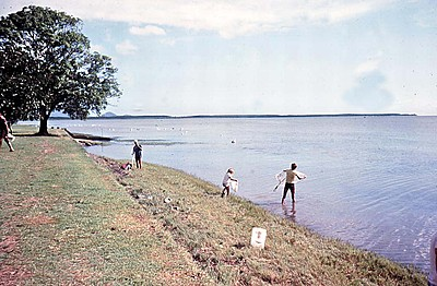 P19185. People with cast nets fishing on Cairns Esplanade 1981